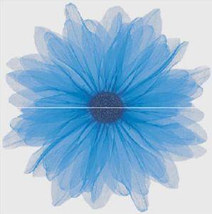 Sofia Blue X2 сет